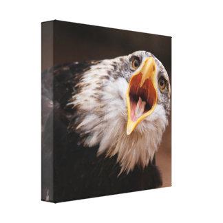 Impresión de griterío de la lona de Eagle Impresión De Lienzo