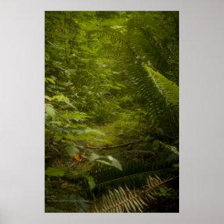 Impresión de hadas de la fotografía de la fantasía