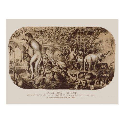 Impresión de la antigüedad del museo de Palaeozoic Tarjetas Postales