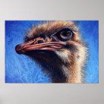 Impresión de la avestruz de Fugley Impresiones
