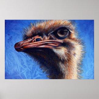 Impresión de la avestruz de Fugley Póster