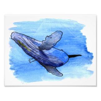 impresión de la ballena jorobada fotografías