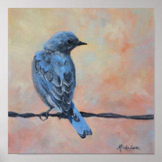Impresión de la bella arte del Bluebird de la mont Posters