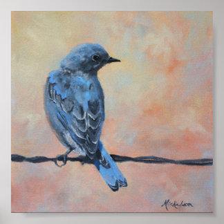 Impresión de la bella arte del Bluebird de la mont Impresiones