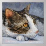 Impresión de la bella arte del gato poster