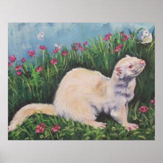 Impresión de la bella arte del hurón del albino poster