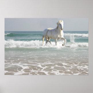 Impresión de la belleza del océano del caballo impresiones