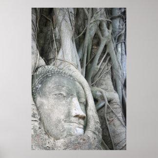 Impresión de la cabeza de Buda Posters