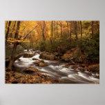 Impresión de la cascada    del otoño impresiones