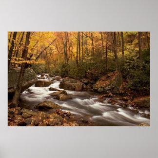 Impresión de la cascada    del otoño póster