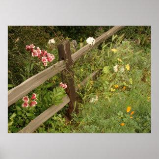 Impresión de la cerca del jardín