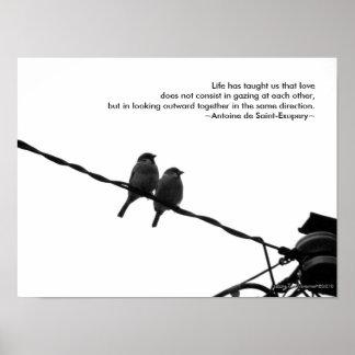 Impresión de la cita del amor/del amor de la foto  impresiones