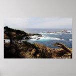 Impresión de la costa de Cypress Posters