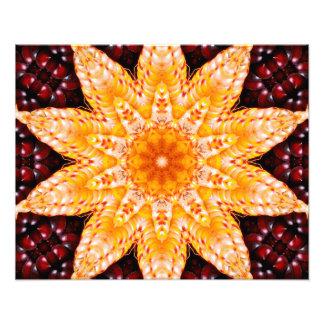 Impresión de la foto de la flor del maíz del otoño