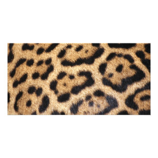 Impresión de la foto de la piel de Jaguar Tarjeta Con Foto Personalizada