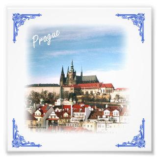 Impresión de la foto de la República Checa de la Cojinete