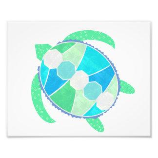 Impresión de la foto de la tortuga de mar