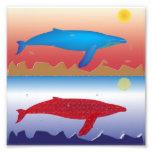 Impresión de la foto de las ballenas