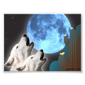 Impresión de la foto de los lobos de la luna azul fotografía