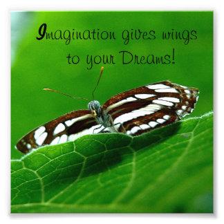 Impresión de la foto de los sueños de la mariposa