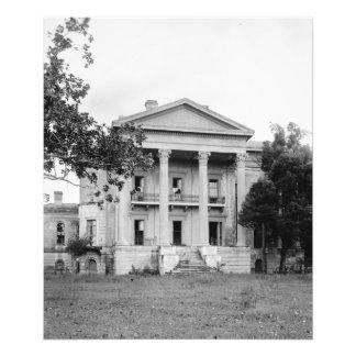 Impresión de la foto de Luisiana de la plantación