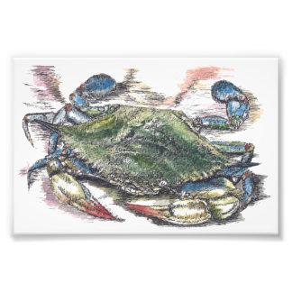 Impresión de la foto del arte del cangrejo azul fotografías
