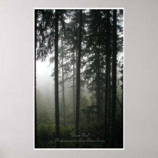 Impresión de la foto del bosque del desierto de l posters