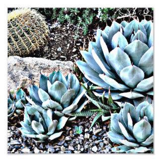 Impresión de la foto del cactus de Sonoran Cojinete