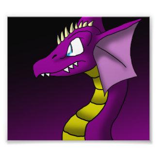 Impresión de la foto del dragón 3/24/13 cojinete