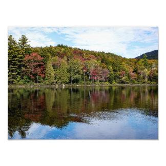 Impresión de la foto del follaje de otoño fotografía