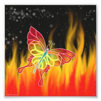 Impresión de la foto del fuego de la mariposa cojinete