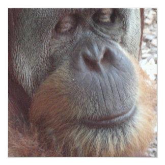 """Impresión de la foto del orangután invitación 5.25"""" x 5.25"""""""