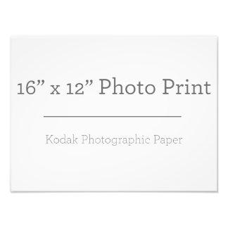 Impresión de la foto X12 del personalizado 16 Fotografía