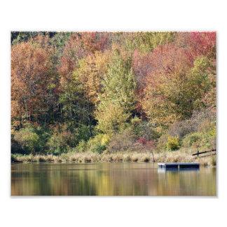 Impresión de la fotografía de la orilla del lago cojinete