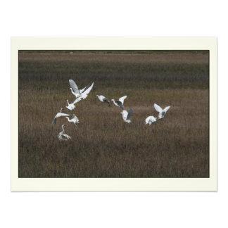 Impresión de la fotografía de los pájaros del Egre