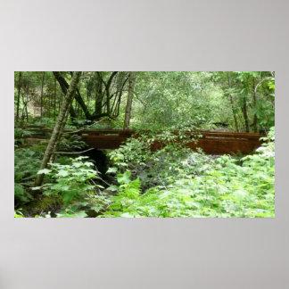 Impresión de la fotografía del puente de maderas d poster