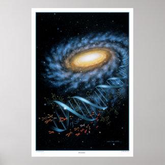 Impresión de la galaxia de la DNA Póster