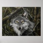 Impresión de la imagen vigilante del lobo de los o posters
