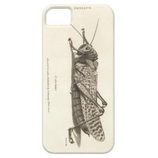 Impresión de la langosta iPhone 5 carcasas