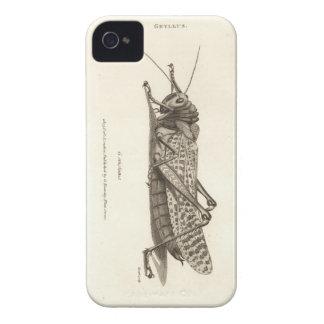 Impresión de la langosta Case-Mate iPhone 4 funda