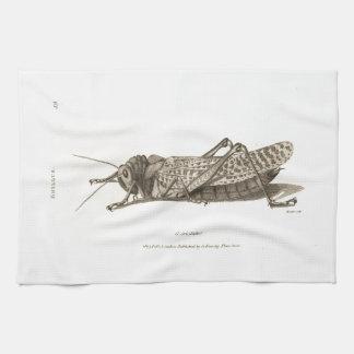 Impresión de la langosta toallas