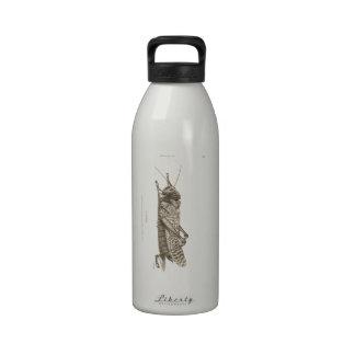 Impresión de la langosta botellas de agua reutilizables