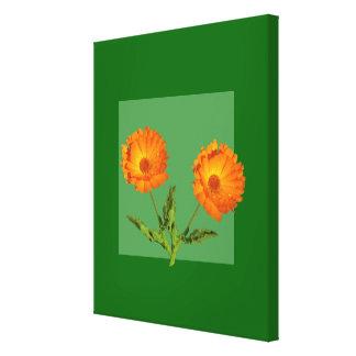 Impresión de la lona - Calendula Lienzo Envuelto Para Galerias