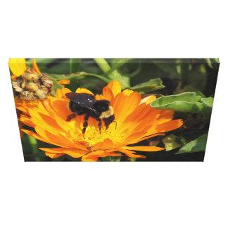 Impresión de la lona - Calendula y abeja Impresión En Lienzo Estirada