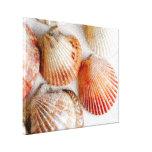 Impresión de la lona de arte de los Seashells de l Impresiones En Lienzo Estiradas