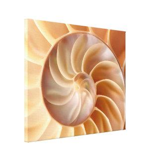 Impresión de la lona de arte de Shell del nautilus