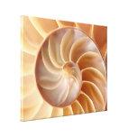 Impresión de la lona de arte de Shell del nautilus Lona Envuelta Para Galerias