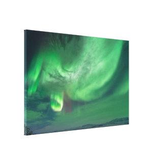 Impresión de la lona de la aurora boreal lona envuelta para galerias