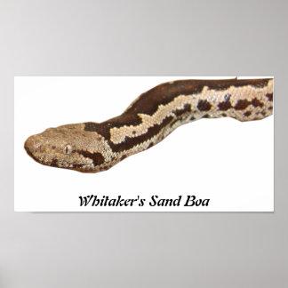 Impresión de la lona de la cartera de WSB Póster