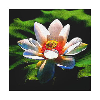 Impresión de la lona de la flor de Lotus Lienzo Envuelto Para Galerias